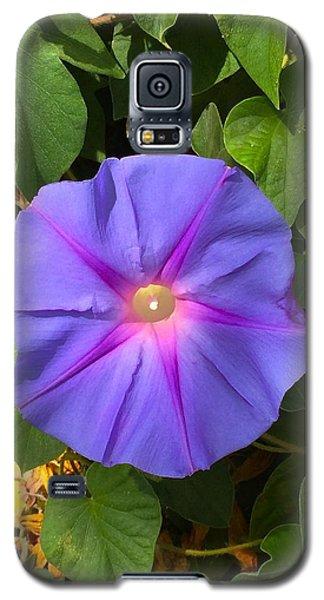 Purple Star Galaxy S5 Case