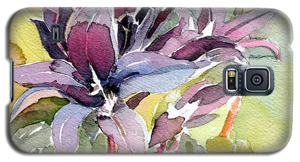 Purple Stem Aster Galaxy S5 Case by Mindy Newman