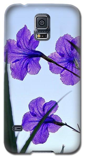 Purple Trio Galaxy S5 Case
