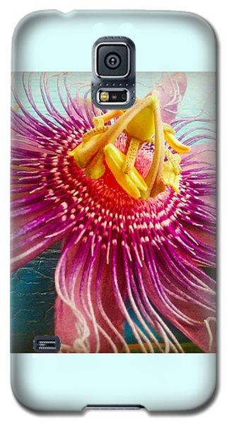 Purple Tropic Galaxy S5 Case by Alicia Berent