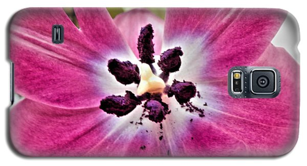 Galaxy S5 Case featuring the photograph Purple Tulip by Nina Ficur Feenan