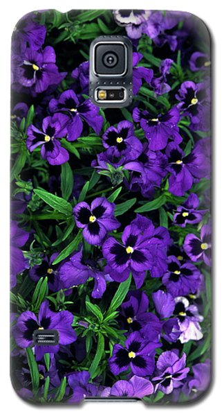 Galaxy S5 Case featuring the photograph Purple Viola Flowers by Sally Weigand