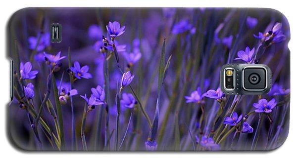 Purple Wildflowers In A Field Galaxy S5 Case by Marjorie Imbeau