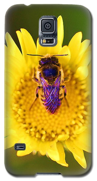 Purple Wings Galaxy S5 Case