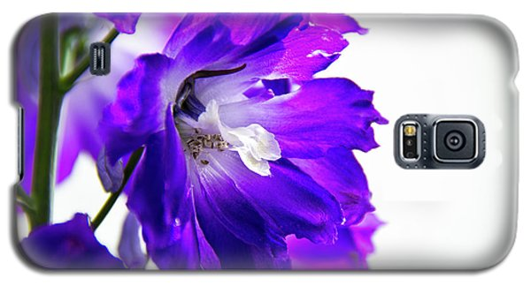 Galaxy S5 Case featuring the photograph Purpled by David Sutton