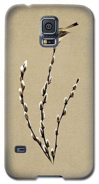 Pussy Willow And Chickadee Galaxy S5 Case