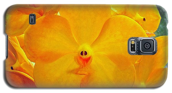 Put On A Happy Face Yellow Orchids Galaxy S5 Case by Sue Melvin
