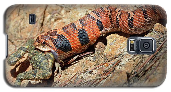 Pygmy Rattlesnake Gorging On A Frog Galaxy S5 Case by Bruce Gourley