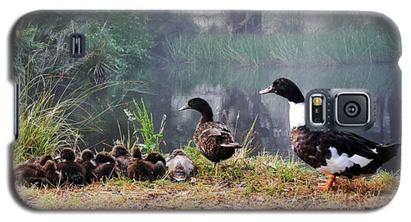 Quack Quack Ducks And A Pond Galaxy S5 Case