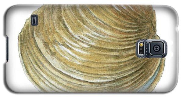 Quahog Shell Galaxy S5 Case