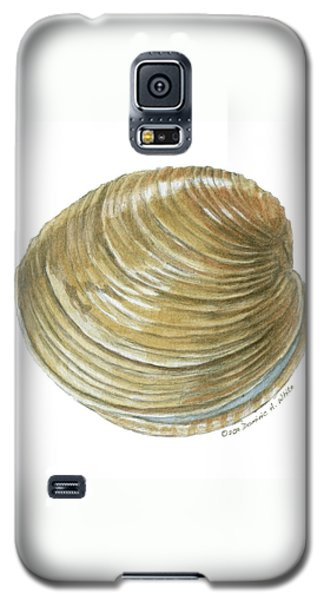 Quahog Shell Galaxy S5 Case