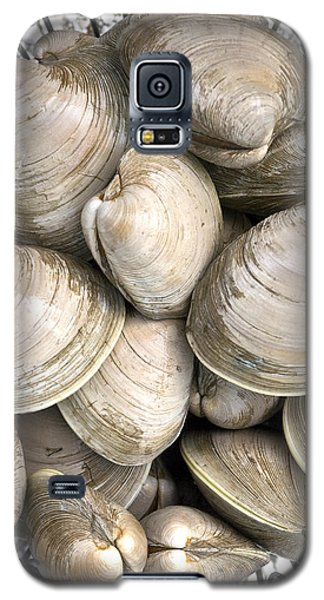 Barnstable Harbor Quahogs Galaxy S5 Case