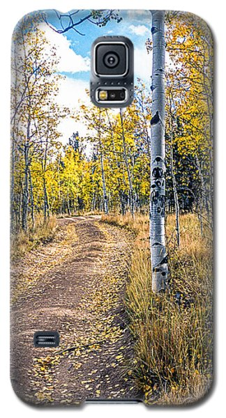 Aspens In Fall With Road Galaxy S5 Case