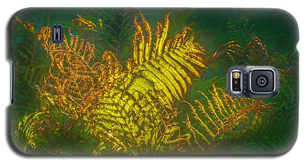 Quantum Fern.... Galaxy S5 Case