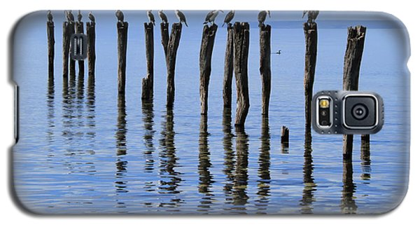 Quay Rest Galaxy S5 Case
