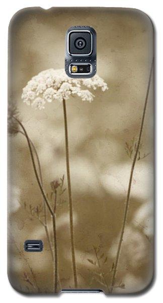 Queen Anne Lace Galaxy S5 Case