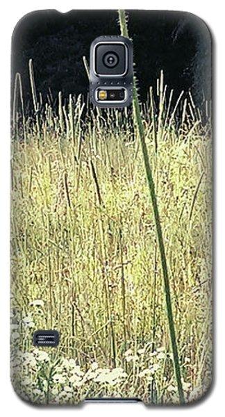 Queen Anne Galaxy S5 Case