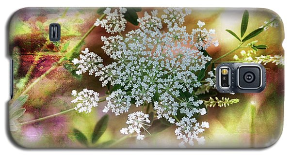 Galaxy S5 Case featuring the photograph Queen Annes Lace by Elaine Manley