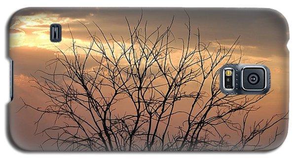Queen Galaxy S5 Case