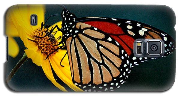 Queen Monarch 2 Galaxy S5 Case
