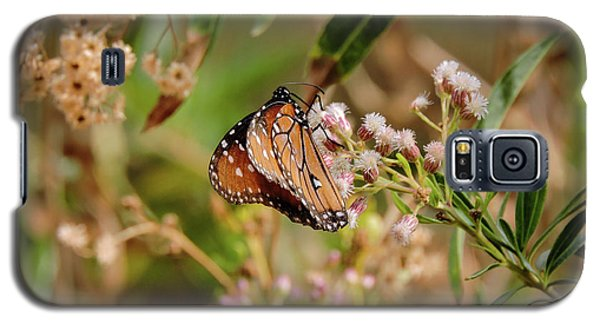 Queen Of The Hassayampa Galaxy S5 Case