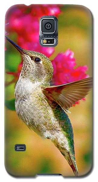 Quick Lunch Galaxy S5 Case