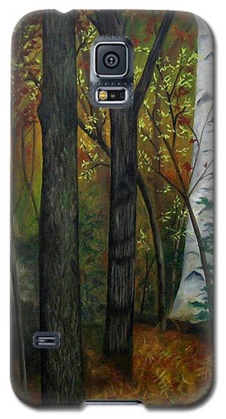 Quiet Autumn Woods Galaxy S5 Case