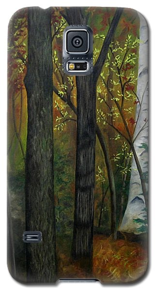 Quiet Autumn Woods Galaxy S5 Case