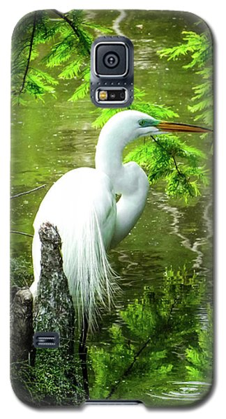 Quiet Moments Of Elegance Galaxy S5 Case by Karen Wiles