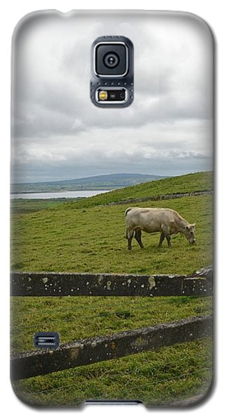 Quiet Pasture Galaxy S5 Case