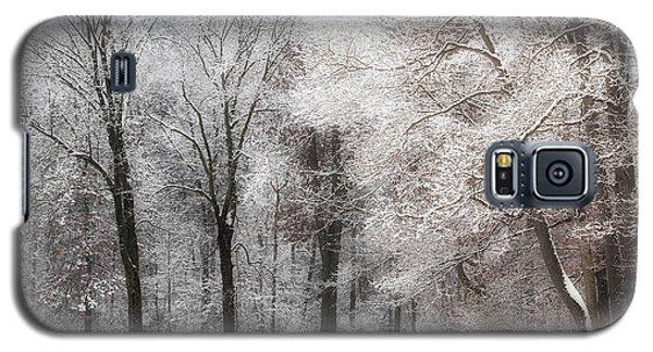 Quiet Winter  Galaxy S5 Case