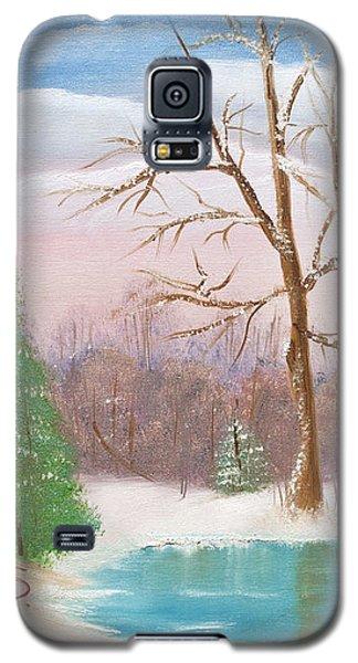 Quietude Galaxy S5 Case