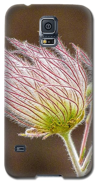Quirky Red Squiggly Flower 1 Galaxy S5 Case