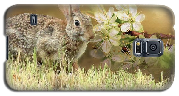 Eastern Cottontail Rabbit In Grass Galaxy S5 Case