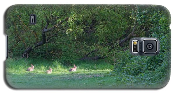 Galaxy S5 Case featuring the photograph Rabbit Meadow by Gary Bridger