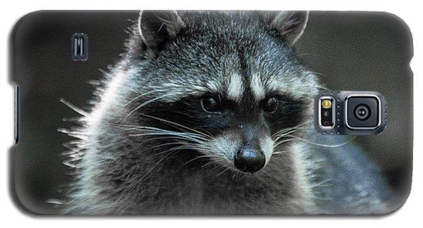 Raccoon 2 Galaxy S5 Case