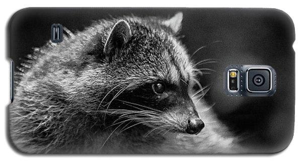 Raccoon 3 Galaxy S5 Case