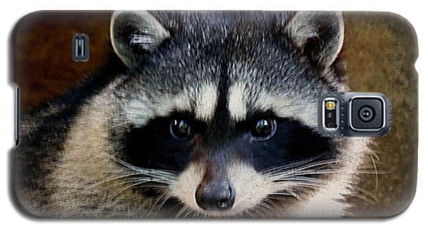Galaxy S5 Case featuring the photograph Raccoon by Janice Spivey