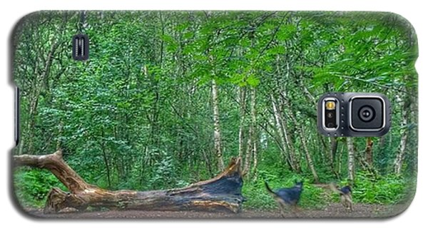 Racing Around The Downed Tree Galaxy S5 Case by Isabella F Abbie Shores FRSA
