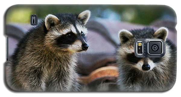 Racoons On The Roof Galaxy S5 Case