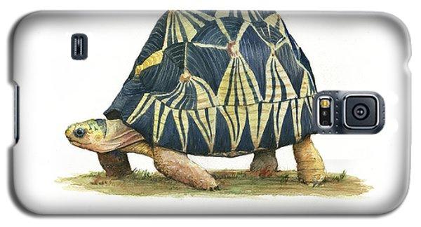 Radiated Tortoise  Galaxy S5 Case by Juan Bosco