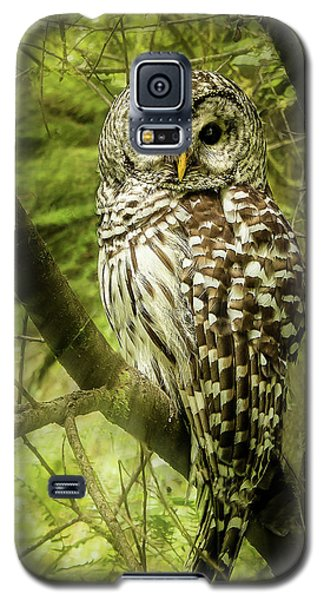 Radiating Barred Owl Galaxy S5 Case by Jean Noren