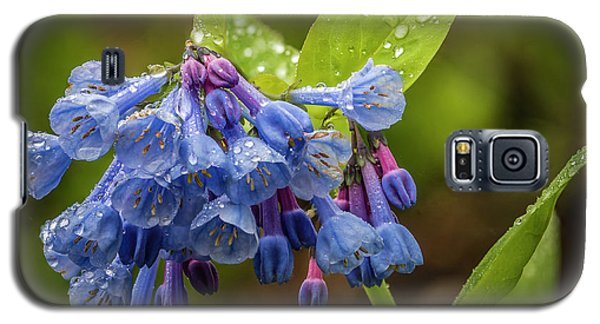 Rain Drop Bells Galaxy S5 Case