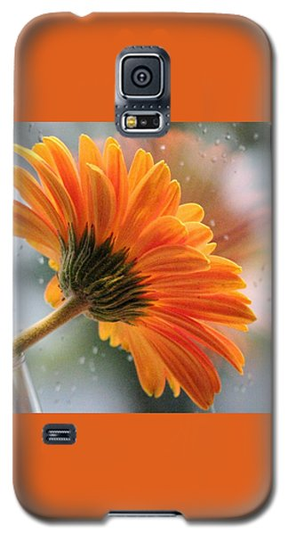 Rain Drops At My Window Galaxy S5 Case