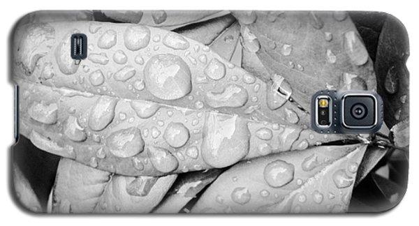 Rain Drops Galaxy S5 Case