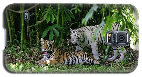 Rain Forest Tigers Galaxy S5 Case