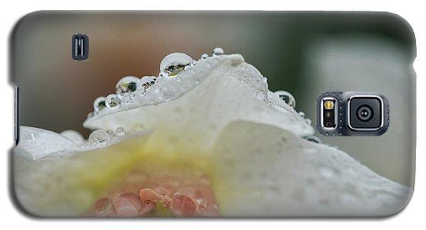 Rain In Daffodils Galaxy S5 Case