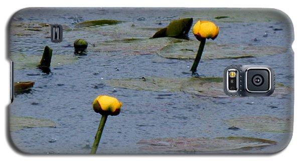 Rain In The Swamp Galaxy S5 Case