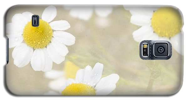 Rain-kissed Chamomile Galaxy S5 Case
