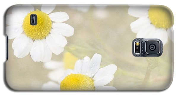 Rain-kissed Chamomile Galaxy S5 Case